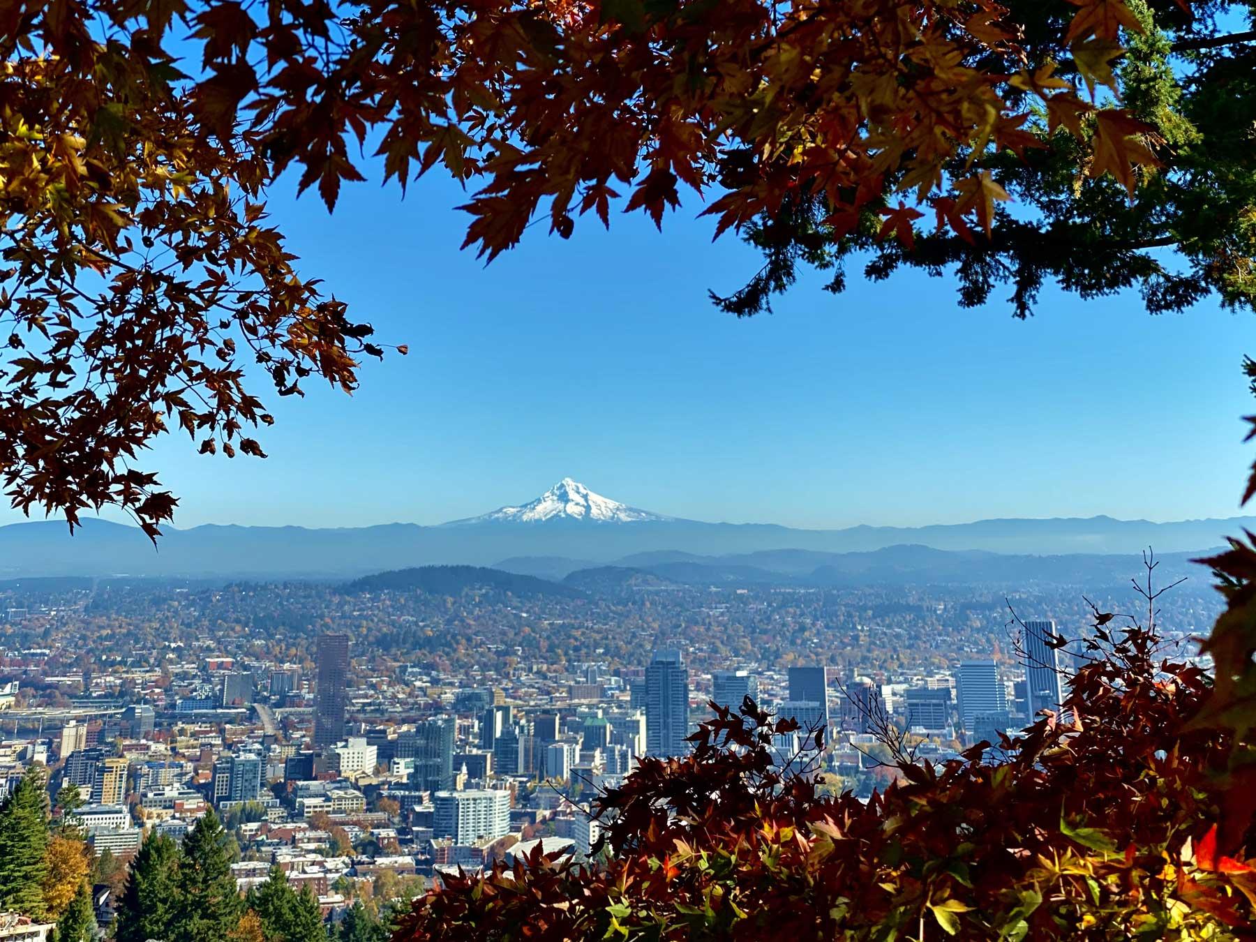 Portland City Tours